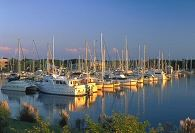 A marina full of boats.