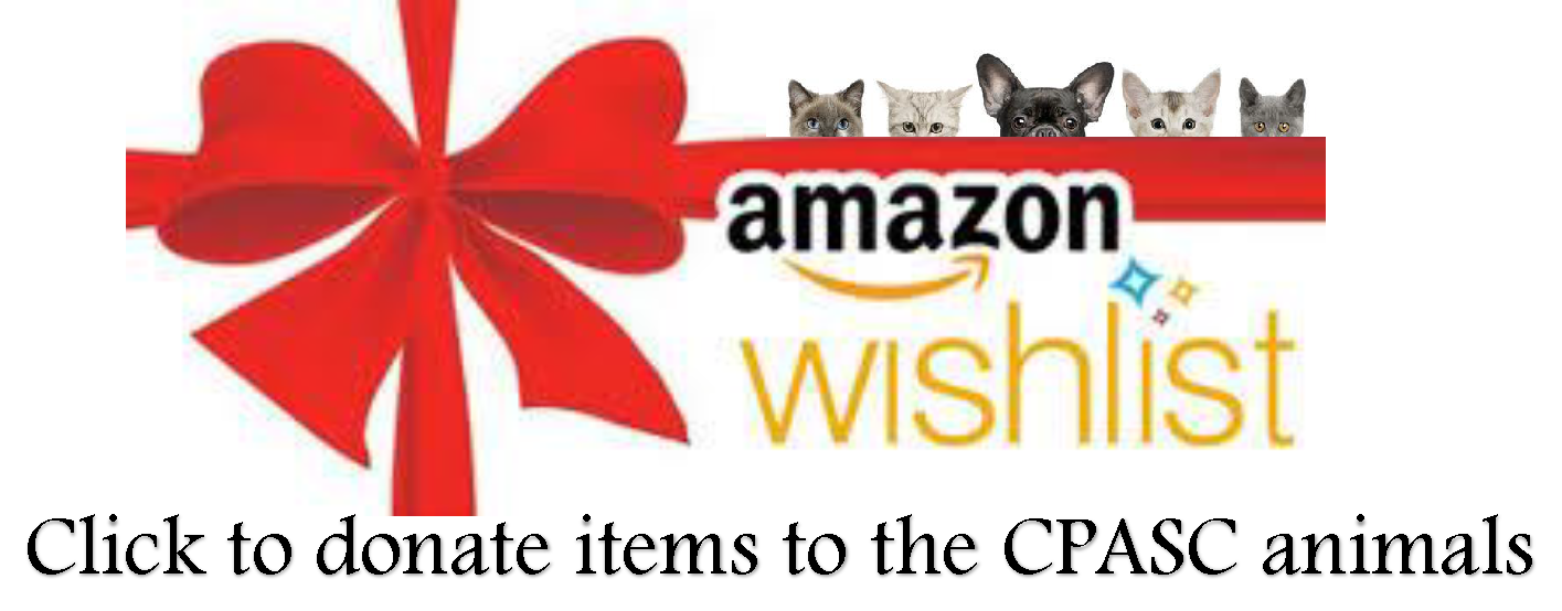 Amazon Christmas Wish List 2019 Opens in new window
