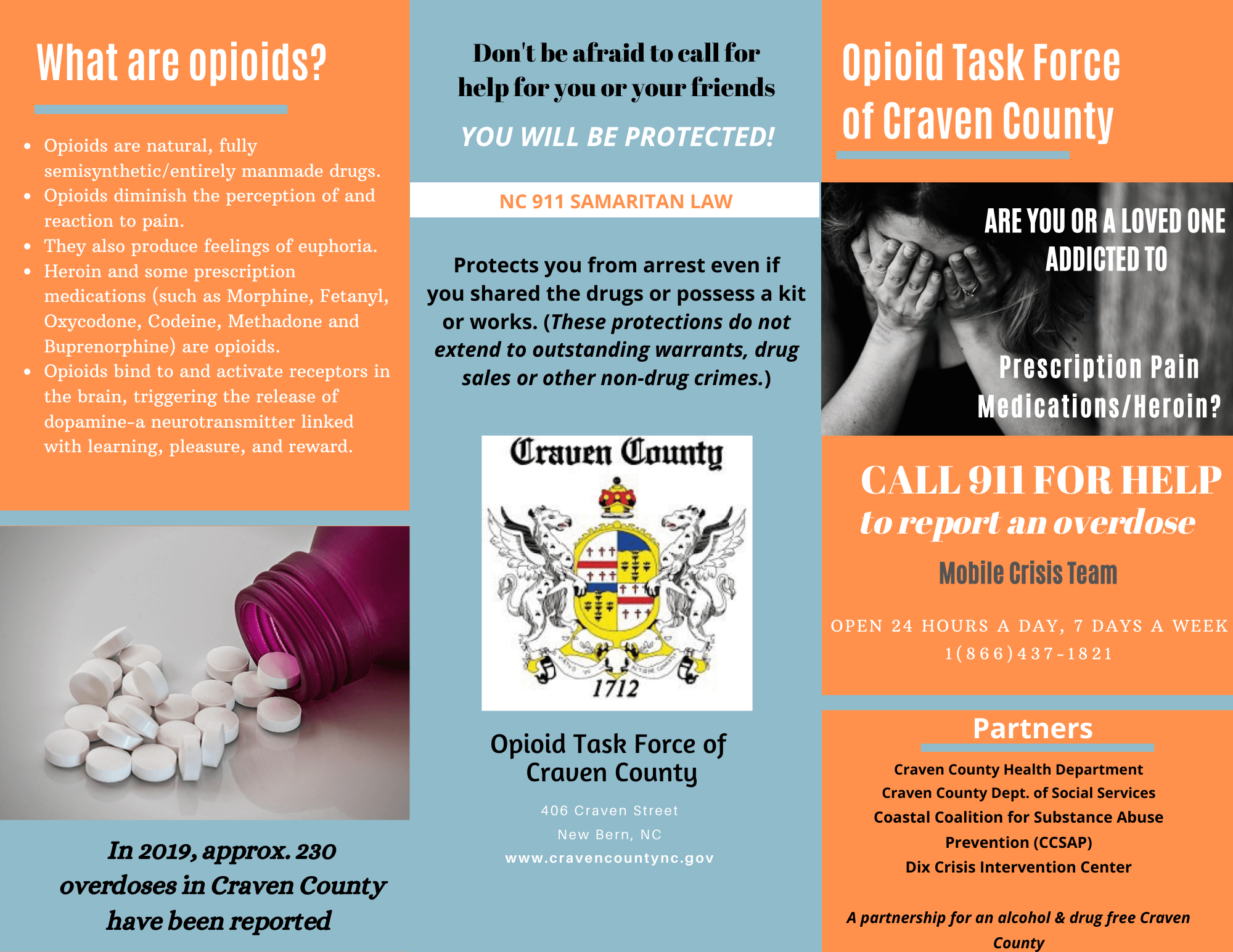 Opioid Task Force Informational Brochure